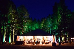 flagstaff enchanted forest weddings